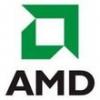 AMD'nin İnadı İnat
