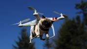Drone satın alırken bilmeniz gerekenler