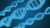 DNA'nız nasıl olsun istersiniz?