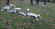 Robotlar futbol oynadı, herkes şaşırdı!