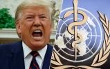 Trump Dünya Sağlık Örgütü ile köprüleri attı!