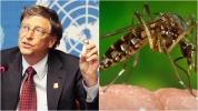 Bill Gates'ten dikkat çeken sivrisinek ve sıtma uyarısı!