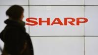 Sharp, OLED Paneller Üretecek