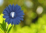 Facebook 'Tepkiler' Uygulama Oluyor