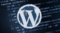 Tarihin en büyük WordPress açığı!