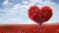 Sevgililer günü için 10 Android Uygulaması
