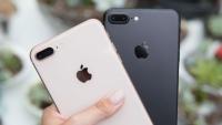 Apple yüksek SAR değerinde zirveye oynuyor!