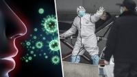 Sosyal medyanın gündemi: Corona virüsü nedir?